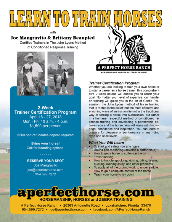 Flyer Learn to Train Horses Page 1