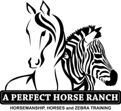 A Perfect Horse Ranch Logo